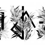 Vector /2012